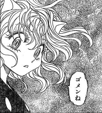 ハンターハンター「HUNTERXHUNTER」(29巻)_感想!ゴンさん登場!ネフェルピトーが死亡!?
