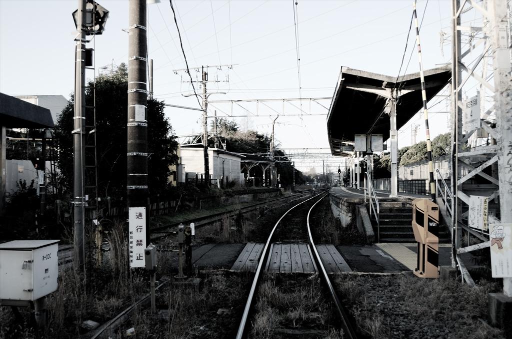 DSC_4950_R.jpg