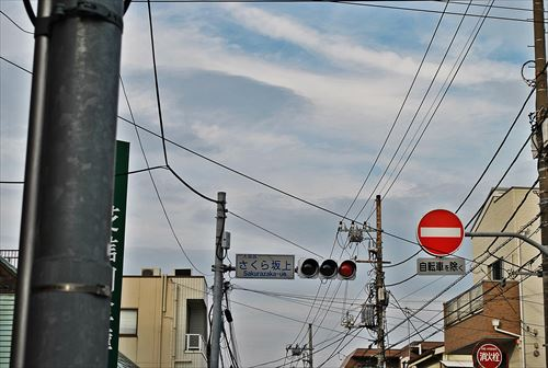 jojosuma004_R_20140329220511a48.jpg